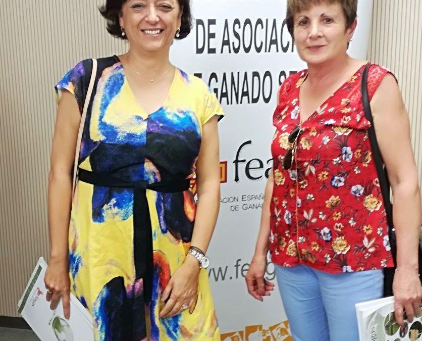 MANADAS CANTABRIA EN LA ASAMBLEA DE FEAGAS