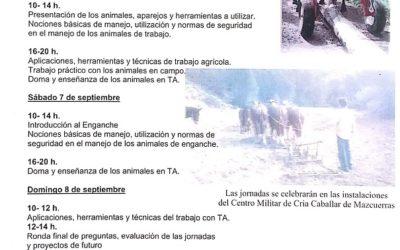 MANADAS ANIMA A PARTICIPAR EN EL TALLER DE INICIACIÓN A LA DOMA DEL CABALLO PARA ENCHANCHE