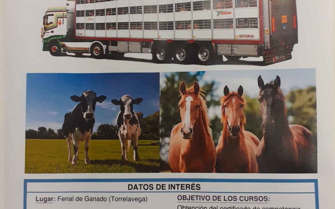 CURSO DE TRANSPORTE DE ANIMALES